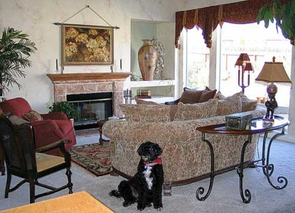 Faux Painted fireplace, Mantel and Faux Tissue Papered wall Custom Silk Window Treatments.